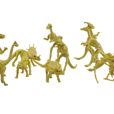 12PCS assorted dinosaur skeletons